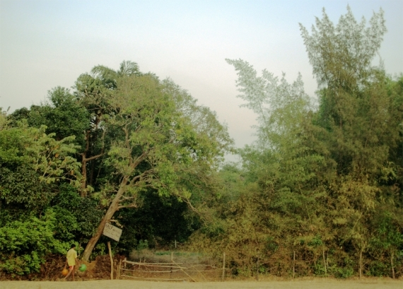 The entrance to a farm just south of Gokarna