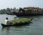 backwaters-3