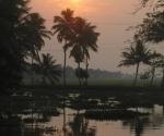 backwaters-6
