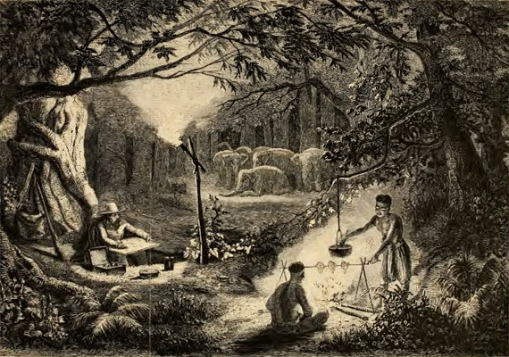 Caption in Mouhot's journal: Bivouac of M. Mouhot in the forests of Lao